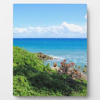 rocky-foliage-coast-deerfield-beach-4s6490 plaque
