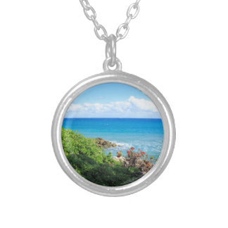 rocky-foliage-coast-deerfield-beach-4s6490 silver plated necklace