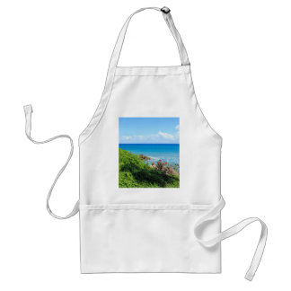 rocky-foliage-coast-deerfield-beach-4s6490 standard apron