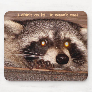 Rocky, I didn't do it!  It wasn't me! Mouse Pad
