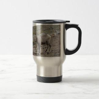 Rocky Mountain Big Horn Sheep Ewe Travel Mug