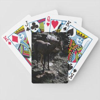 Rocky Mountain Bighorn Sheep, ewe Bicycle Playing Cards
