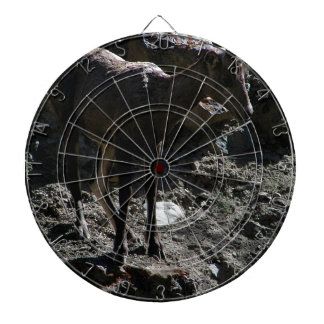 Rocky Mountain Bighorn Sheep, ewe Dartboard
