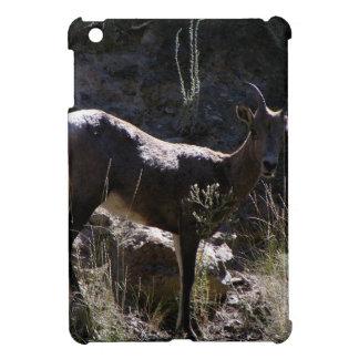 Rocky Mountain Bighorn Sheep, ewe iPad Mini Cases