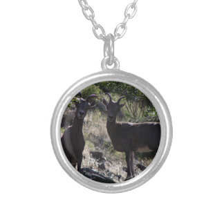 Rocky Mountain Bighorn Sheep Silver Plated Necklace