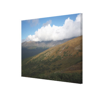 Rocky Mountain Day Canvas Print