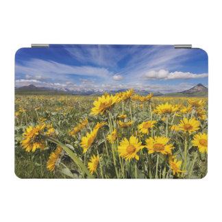 Rocky Mountain Front Range iPad Mini Cover