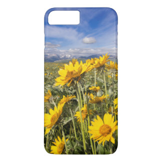 Rocky Mountain Front Range iPhone 7 Plus Case