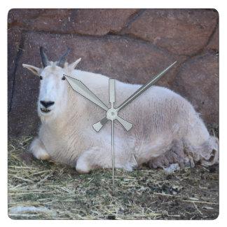 Rocky Mountain Goat Clock