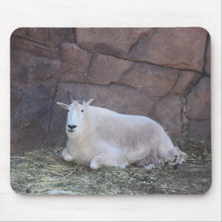 Rocky Mountain Goat Mouse Pad