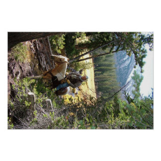Rocky Mountain Horse Ride Poster