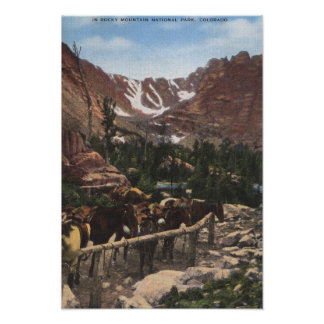 Rocky Mountain National Park, CO Poster