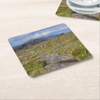 Rocky Mountain National Park Square Paper Coaster