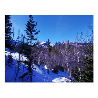 Rocky Mountain Snowshoe Postcard