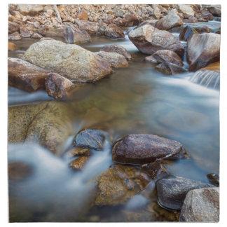 Rocky Mountain Streaming Dreaming Napkin