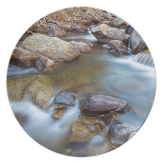 Rocky Mountain Streaming Dreaming Plate