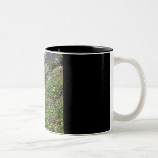 Rocky Mountain Wildflowers Two-Tone Coffee Mug