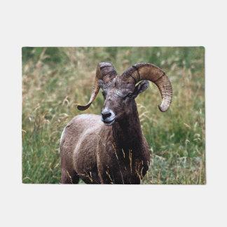 Rocky Mountains Bighorn Sheep Doormat