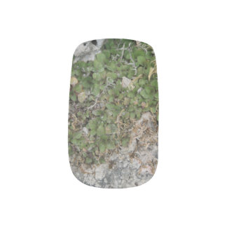 Rocky Plant Minx Nail Art