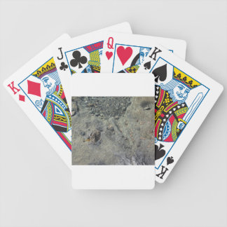 Rocky seabed through transparent sea water bicycle playing cards