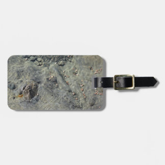 Rocky seabed through transparent sea water luggage tag