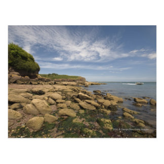 Rocky Seaside With Motorboat Traveling Postcard