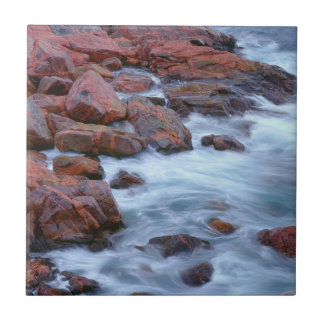 Rocky shoreline with water, Canada Tile
