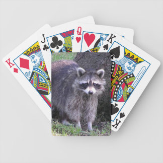 Rocky the Raccoon Bicycle Playing Cards