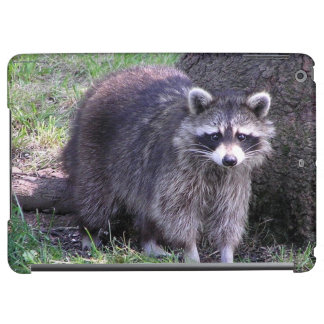 Rocky the Raccoon iPad Air Cover