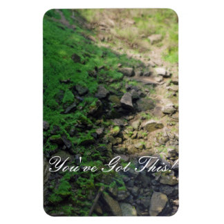 Rocky Trail Through the Woods Rectangular Photo Magnet