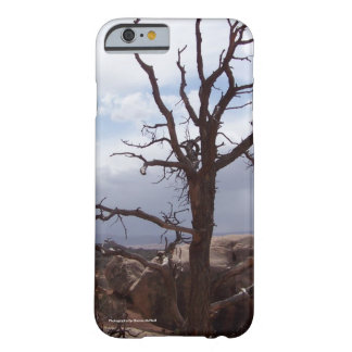 Rocky tree Cell Phone and Ipad case