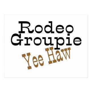 Rodeo Groupie Yee Haw Postcard