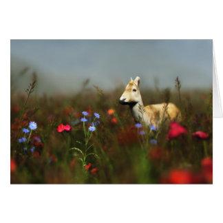 Roe in a Meadoe Card