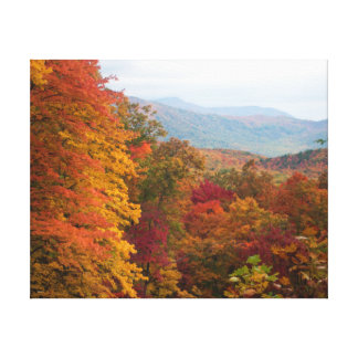 Rolling Hills in the autumn Canvas Print