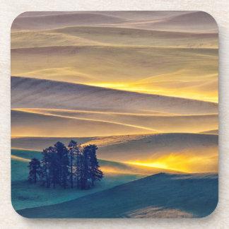 Rolling Hills of Wheat at Sunrise | WA Coaster