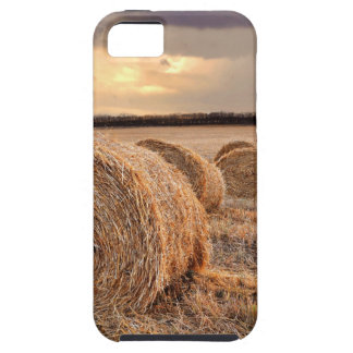 Rolls of Hay iPhone 5 Cover