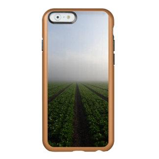 Romaine lettuce field foggy morning photo case incipio feather® shine iPhone 6 case