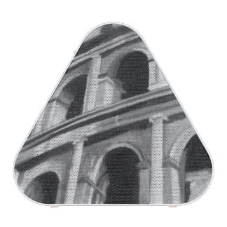 Roman Colosseum with Architectural Drawings Speaker