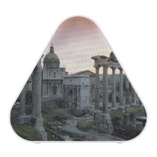 Roman Forum at dawn Speaker