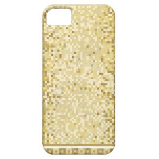Roman style background iPhone 5 case