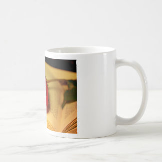 Romance in Literature Coffee Mug
