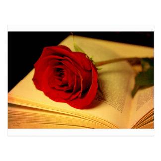 Romance in Literature Postcard