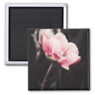 Romancing Pink Magnet