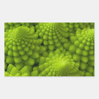 Romanesco Broccoli Fractal Vegetable