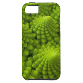 Romanesco Broccoli Fractal Vegetable Case For The iPhone 5