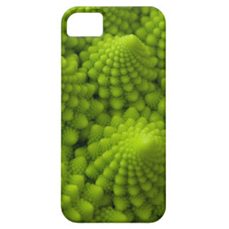 Romanesco Broccoli Fractal Vegetable iPhone 5 Cases