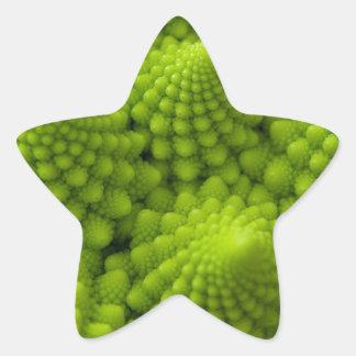 Romanesco Broccoli Fractal Vegetable Star Sticker