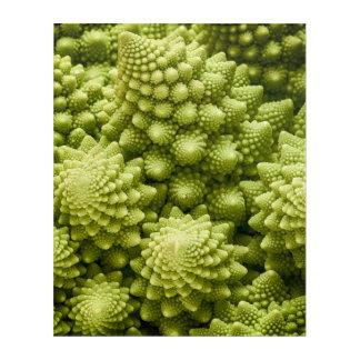 Romanesco broccoli vegetable close up acrylic wall art