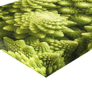 Romanesco broccoli vegetable close up canvas print
