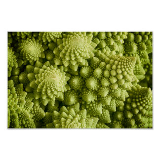 Romanesco broccoli vegetable close up poster